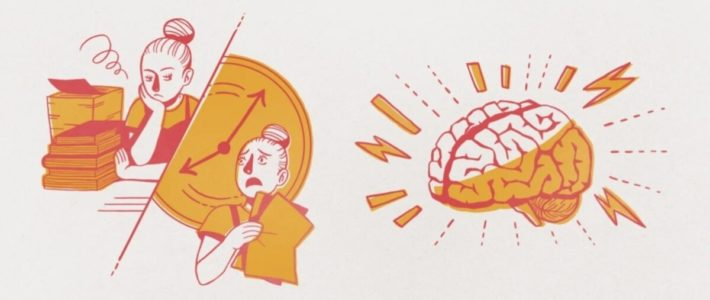 Рутина и ноотропы: как удвоить личную эффективность, если работы по горло